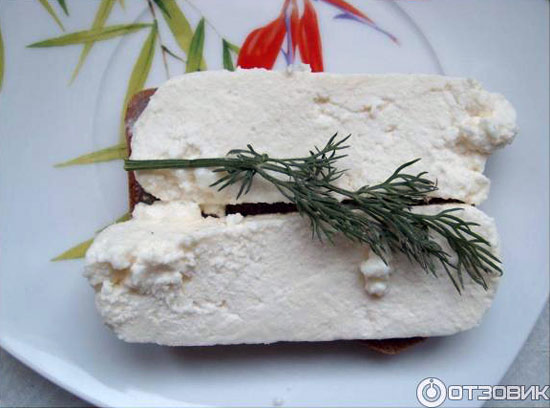 syr-amaltej-lattesco-5