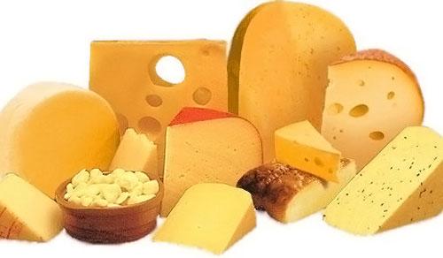 Какой сыр лучше делать на продажу