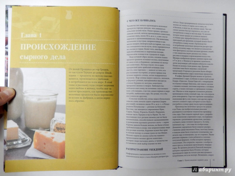 kniga-domashnij-syr-tvorog-jogurt-maslo-i-drugie-produkty-iz-moloka-5