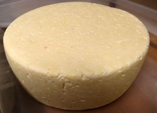 сыр Тильзитер