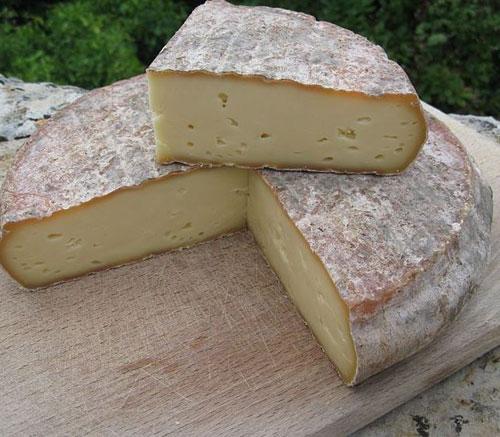 сыр сен-нектер